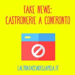 Fake news: castronerie a confronto